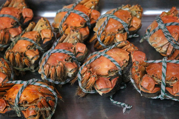 crabs in Shanghai
